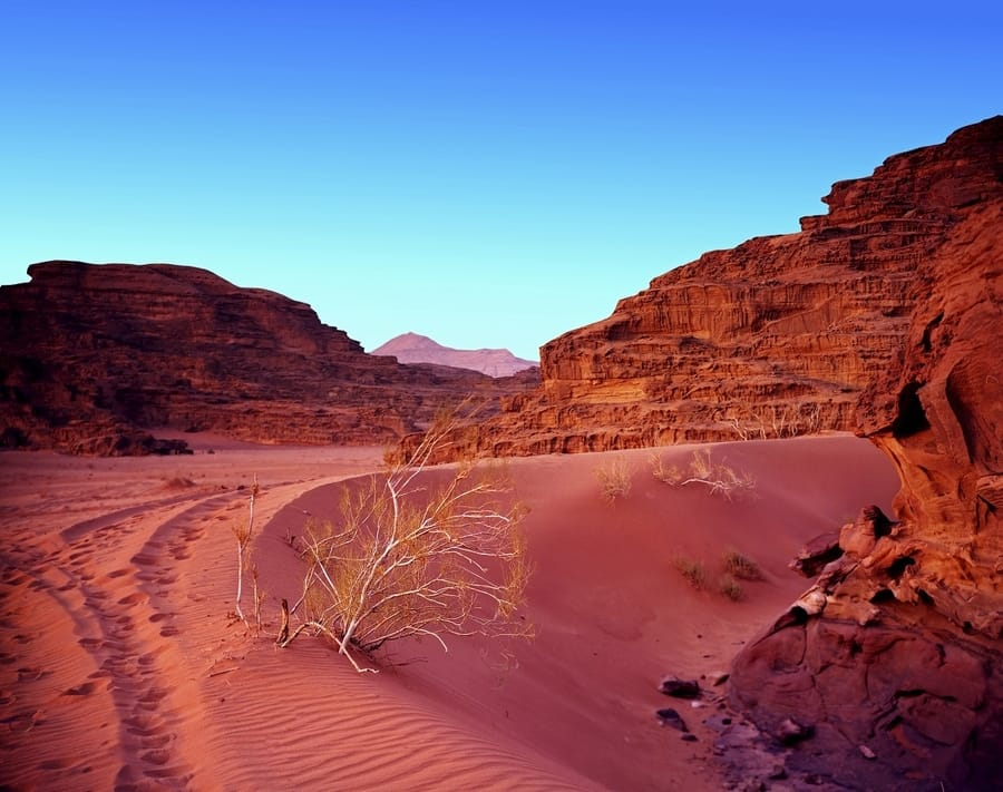 The Magnificent Wadi Rum